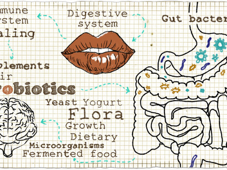 10 steps to finding digestive calm - Downloadable Ebook