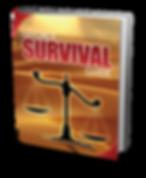 Divorce, A Survival Guide