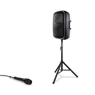 Ion Speaker .jpg