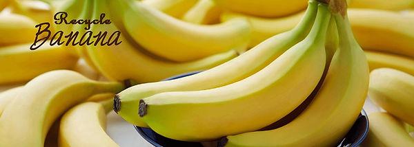 みんなの味方!リサイクバナナ菊水店
