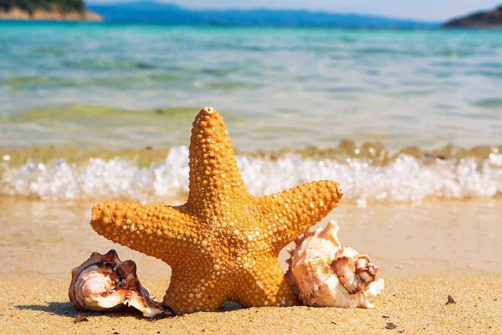 marketing-tips-for-the-summer-holidays