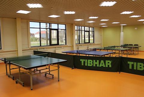 www.getbg_.net_2017sport_rackets_for_tab
