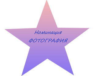 Номинация фотография.png