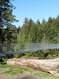 View of the Top Bridge suspensioni bridge from the parking area.  Mesh steel design