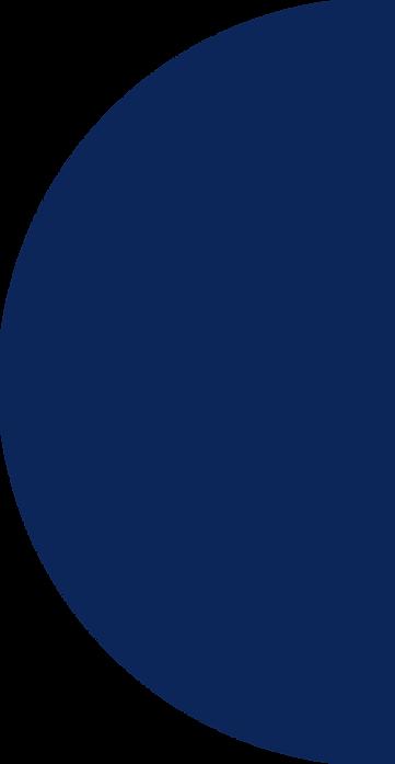 david lippe_logo bleu.png