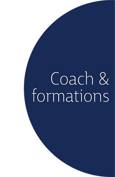 Logo_ David Lippe_ COACH.png