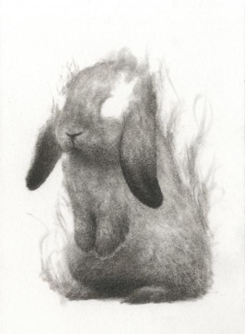 Smokey Bun