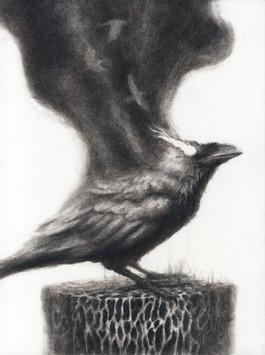 Smokey Raven