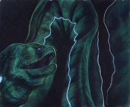 Eel - Commission