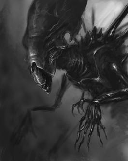 Digital Xenomorph Sketch