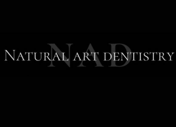 Kit Natural Art Dentistry