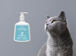 Shampoo Cat.jpg