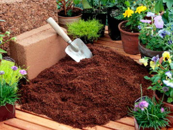 Coco Peat is good for Agriculture and Gardening!