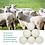 Thumbnail: 100% Wool Cotton Laundry Dryer Balls