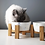 Thumbnail: New Design Ceramic Pet Bowls for Dogs and Cats Bamboo Stand Double Pet Bowls