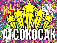 emissions atcokocak-01.png