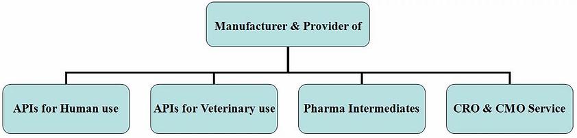 Conscientia Industrial manufacture APIs, intermediates and provide CRO, CMO services