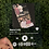 Thumbnail: Custom Spotify Plaques