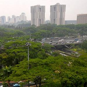 Ruang Terbuka Hijau (RTH) Demi Kota yang Bebas Banjir. Bagaimana Realisasinya?