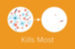 ecosense-disinfection-services-1.jpg