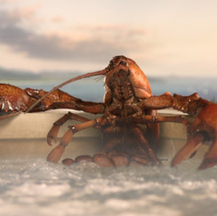 Lobster Hot Tub Party- Geico