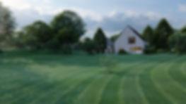 GrassShowcaseLandscape.jpg