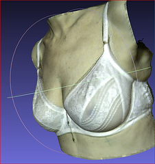 A 3D scan of the torso of a woman in a white bra.