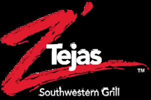 ZTejas-logo.png
