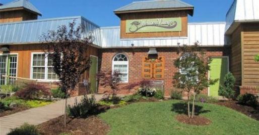 The Wellness Village Richmond VA