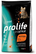 LifeStyle-Kitten.jpg