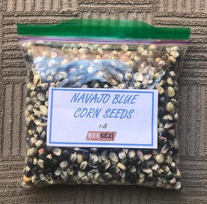 Navajo Blue Corn Seeds