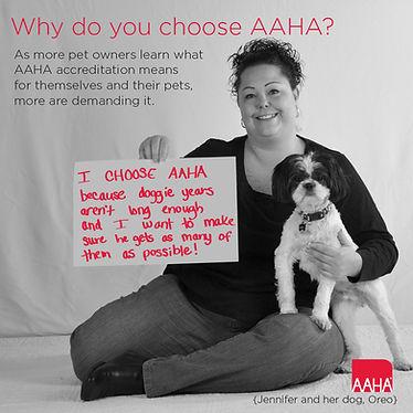 Thompson Animal Medical Center | Vet Clinic | Animal Hospal | AAHA | La Crosse