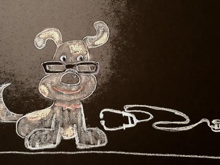 Doggie Doctor