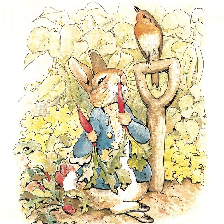 SPRING: 120 years of Peter Rabbit