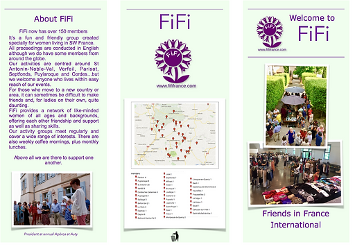 Screen Shot Brochure FiFi.png