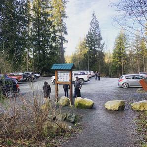communityforestparkinglot.jpg