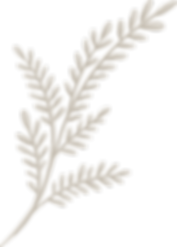 Eventide-Leaves-18.png