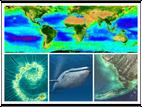 Ja, Marine Phytoplankton is echt zo'n wonder!!
