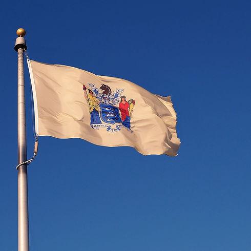 new-jersey-flags_2048x.jpg