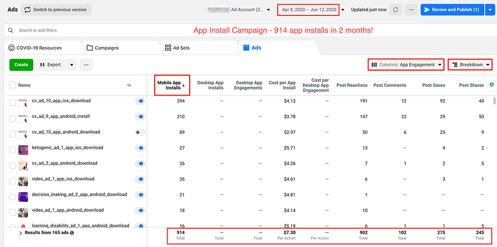 Facebook App Install Campaign Reporting Example