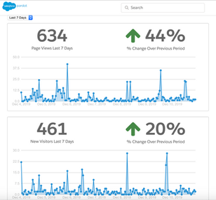 Page Views and New Visitors Analytics