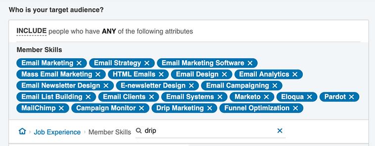 Targeting by skills on LinkedIn