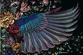 Shovava Onyx wings scarf