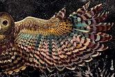 Shovava Night owl wings scarf