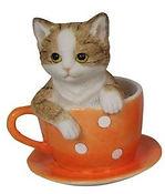 Cat in orange tea cup