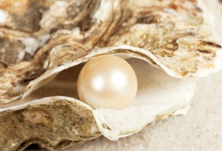 The Kingdom of Heaven is Like a Merchant Searching for Pearls
