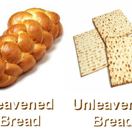 What Can Yeast Teach Us About The Kingdom of Heaven?