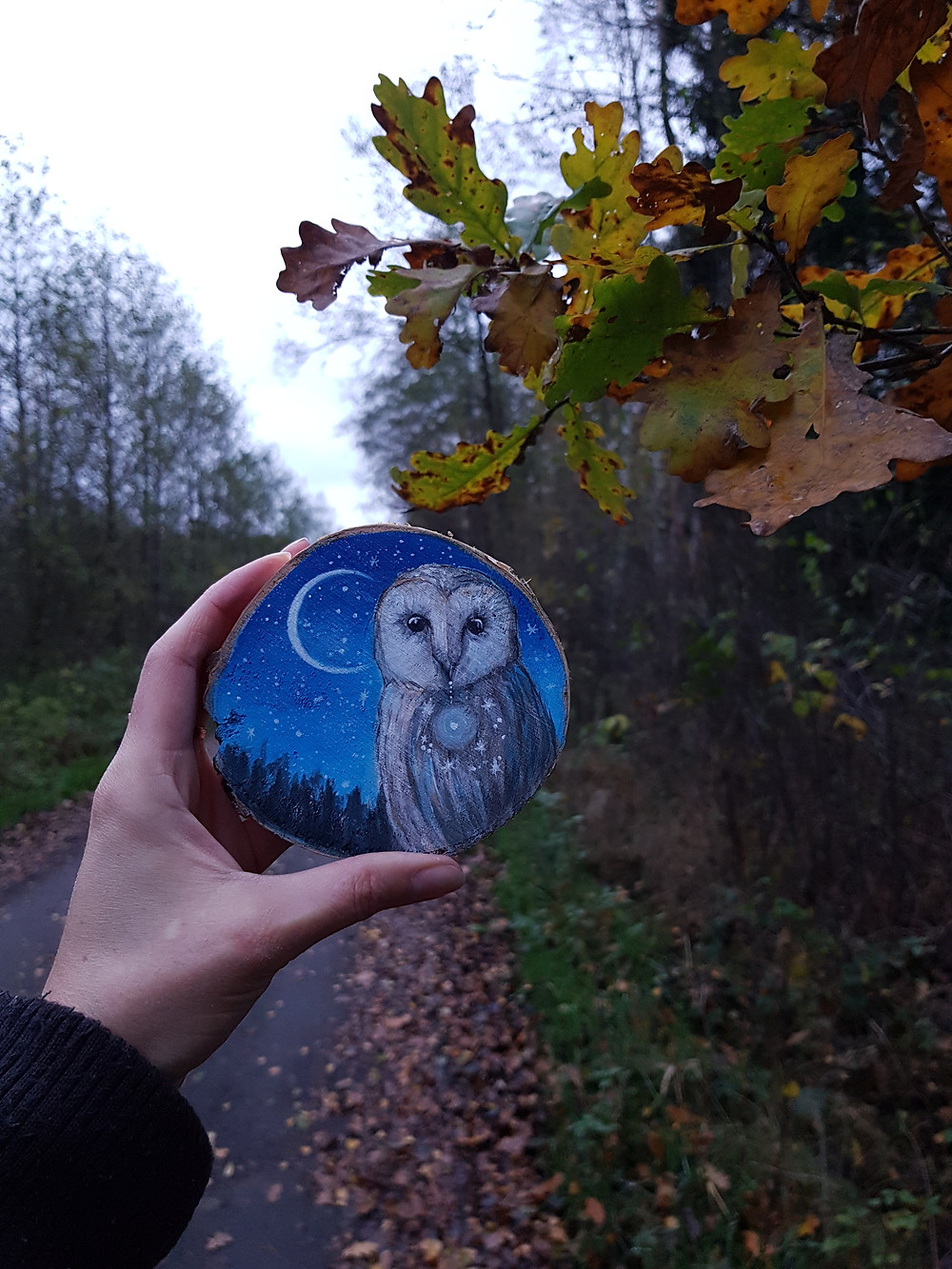painting on wood owl forest design