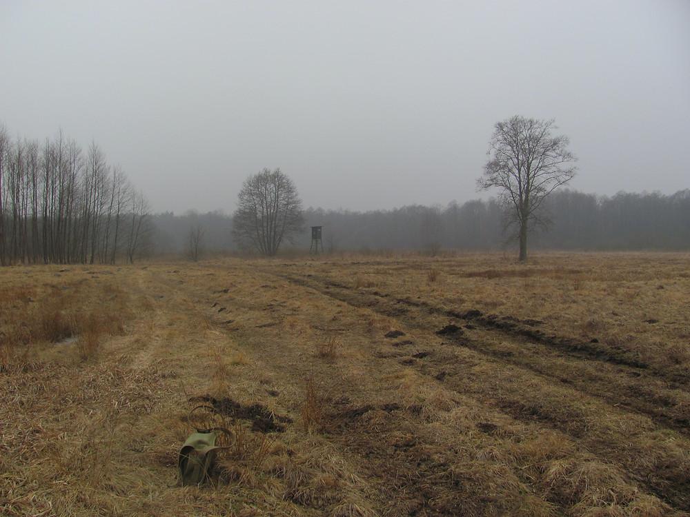 Rezerwat Majdan