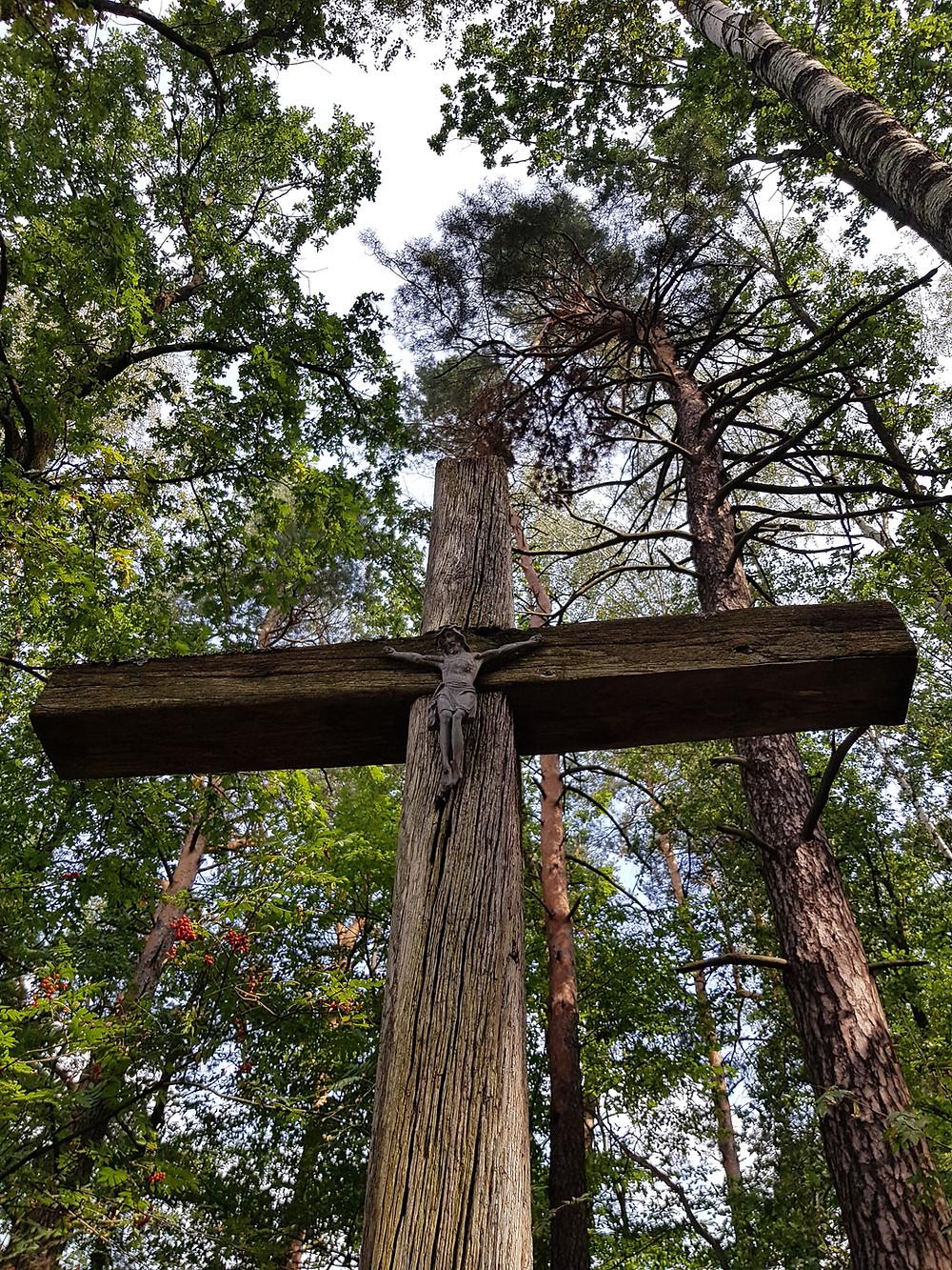 strary krzyż w lesie